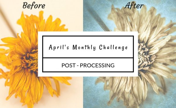 postprocessing challenge