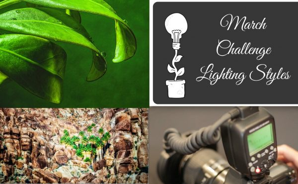 light challenge, photo challenge,