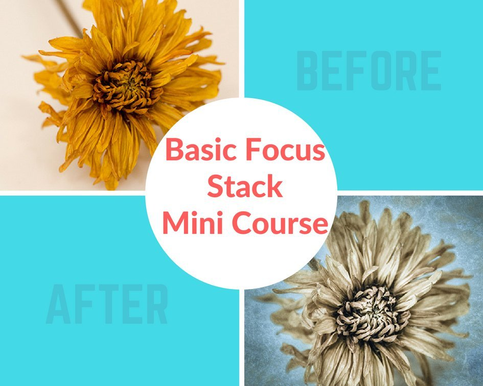 basic_focus_stack