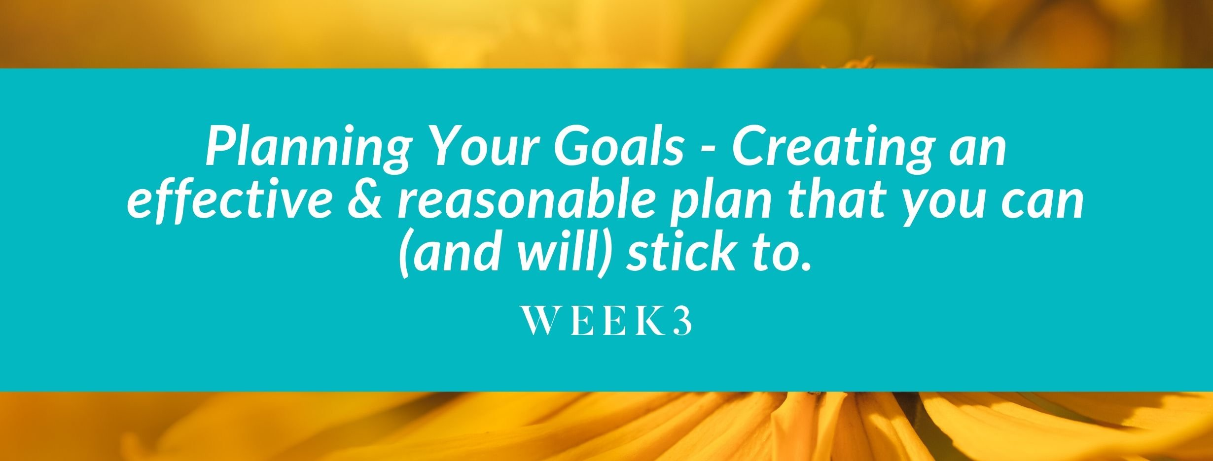 Planning Your Goals - Creating an effective & reasonable plan that you can (and will) stick to.