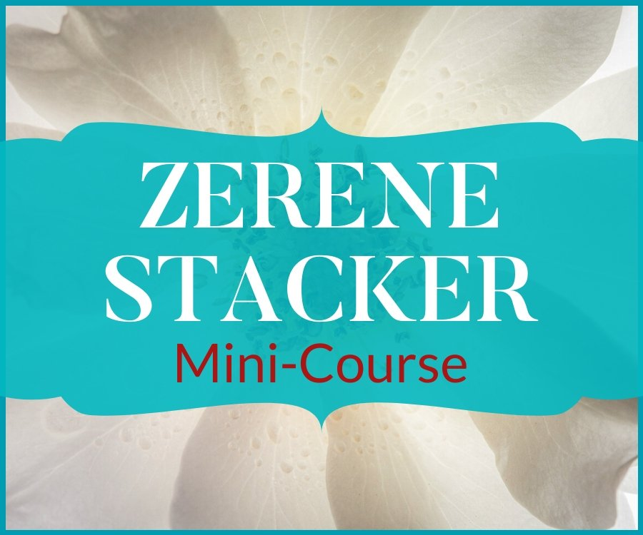 zerene stacker minicourse
